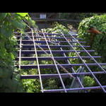 Overhead view of horizontal section of south veranda level wall trellis system